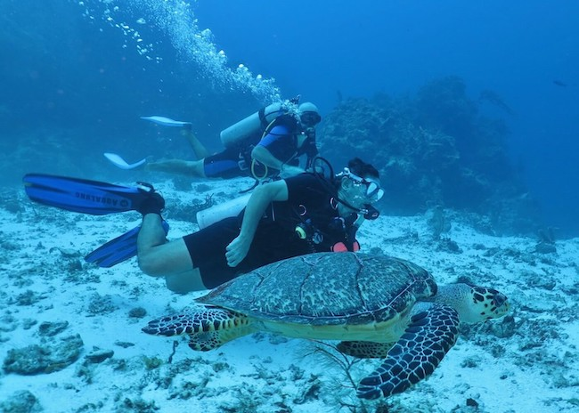 George and Erik learning to scuba dive in the reefs of the Cozumel island.